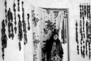 نمایشگاه عکس کهکیولویه و بویر احمد