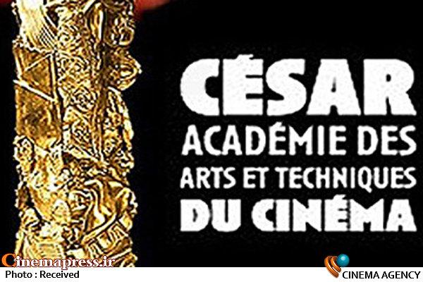 جایزه سزار