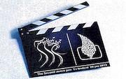 جشنواره فیلم های تلویزیونی جام جم