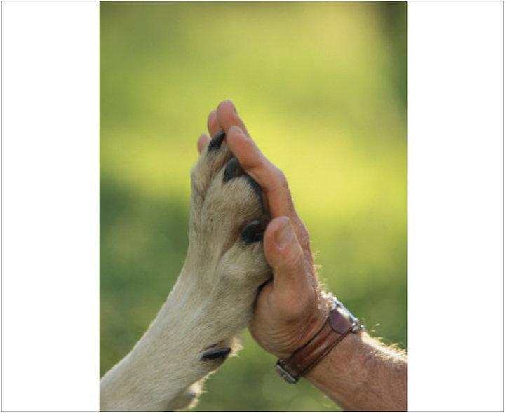 تمرکز «دشمن» بر استفاده از «جنگ نرم» همراه با لافزَدن از «جنگ سخت»