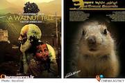 از نمایش ظلم و ستم طالبان و داعش تا زیبایی های حیات وحش همدان در «امپراطوری سنجابها»