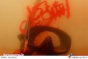 پوستر فیلم سینمایی اشنوگل