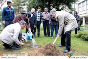 درختکاری در دانشگاه تهران