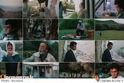 زلزله در سینمای ایران