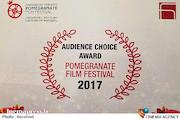 جشنواره فیلم انار