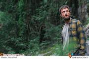 فیلم جنگل