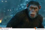 """فیلم سینمایی """"سیاره میمونها"""""""