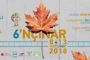 جشنواره فیلم ترکیه