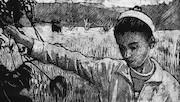 مستند «جاده سامونی»