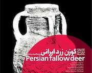 برنامه  گوزن زرد ایرانی