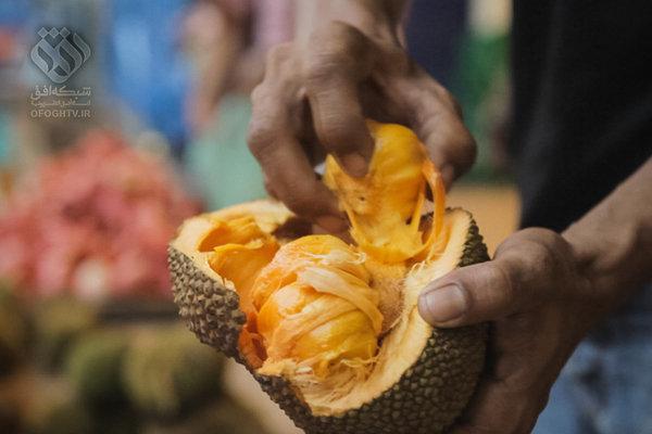 مستند «شکارچیان میوه مدافعان تنوع»