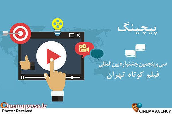 «پیچینگ» جشنواره فیلم کوتاه تهران