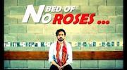 بستری از گل های رز نیست