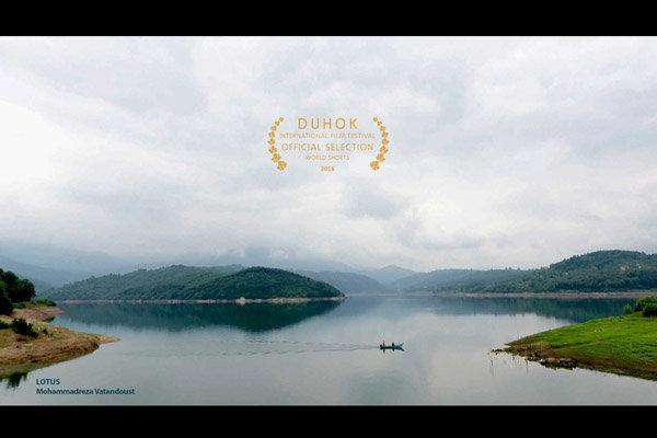 جشنواره بینالمللی فیلم «دهوک» عراق