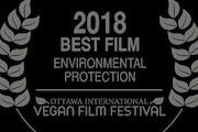 جشنواره «اوتاوا» در کانادا