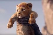 انیمیشن سینمایی شیرشاه