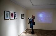 دومین جشنواره بین المللی هنرهای تجسمی