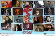 پرکارترین سینماگران فجر ۳۷