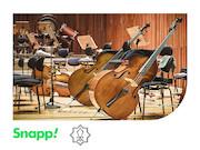 تخفیف ویژه اسنپ برای هواداران جشنواره موسیقی فجر