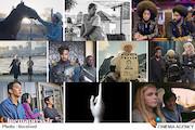 تحسین شده ترین فیلم های جهان توسط منتقدان و جشنواره ها/ از رکوردشکنی سینماگر مکزیکی تا درخشش فیلمسازان گمنام