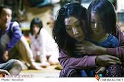 فیلمی متوسط و مماس با مرز ابتذال!/ نگاهی به فیلم سینمایی «دله دزدها» ساخته هیروکازو کورئیدا