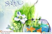 عید نوروز-سال نو ۱۳۹۸
