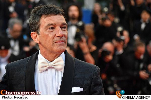 آنتونیو باندراس در جشنواره فیلم کن ۲۰۱۹