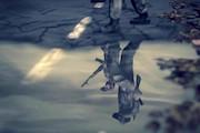 انیمیشن «بادها کجا میمیرند»