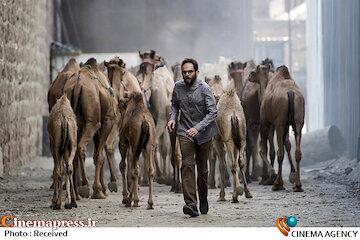 فیلم / تیزر فیلم سینمایی «روز بلوا»