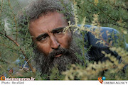 مهران احمدی در پایتخت 6