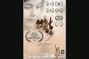 فیلم کوتاه «بابردوو»