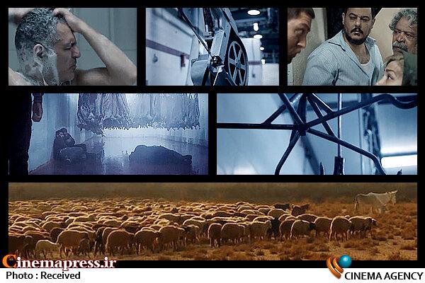 فیلم سینمایی کشتارگاه