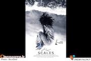 فیلم سینمایی «دختر دریا» (Scales)