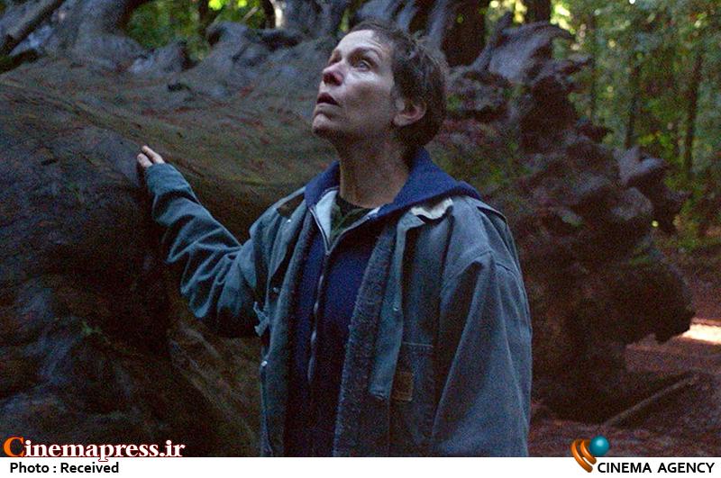 «سرزمین آوارگان» یکی از مهمترین فیلمهای قرن ۲۱/ فیلمی که مخاطبش را به انتخاب دعوت میکند!