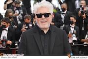 پدرو آلمودوار در جشنواره فیلم کن ۲۰۲۱