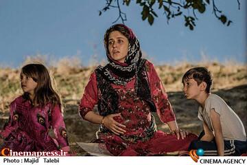 مینو شریفی در فیلم سینمایی «درخت گردو»